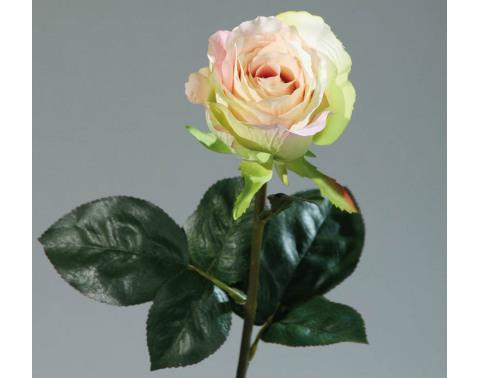 Levně Umělá květina Růže Equador, krémová
